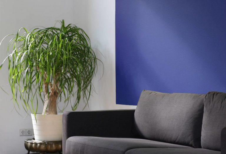 Inspiracja – mocne kolory w mieszkaniu