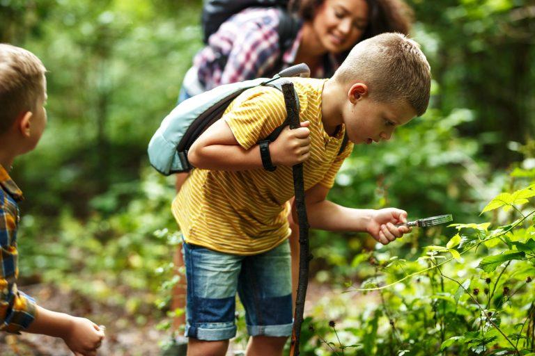 10 pomysłów na wypad wiosenny z dziećmi bliżej natury