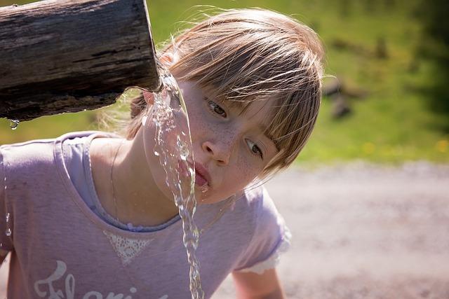 Jak wybrać filtr wody do domu rodzinnego?