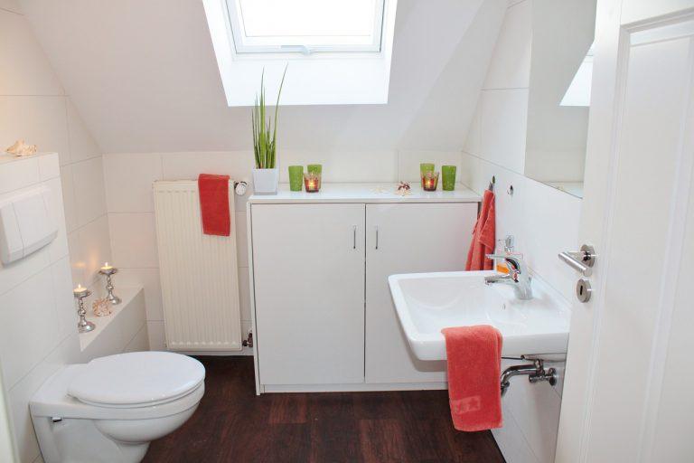 Jak prawidłowo umyć toaletę?